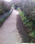 coastal path from badger bridge