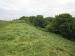 scything Wain's Hill ramparts in June