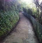coast path, Church Hill