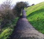 path photo 4