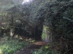 green gate 2