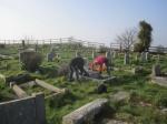 grave tidying again