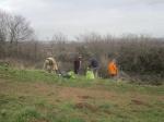 scrub control in grassland