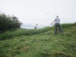 Wain's Hill June scything starts