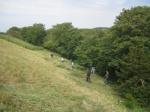 Wain's Hill raking