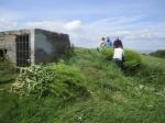 wild turnip pulling on Wain's Hill