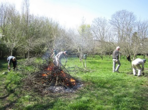 Woodcutters at work