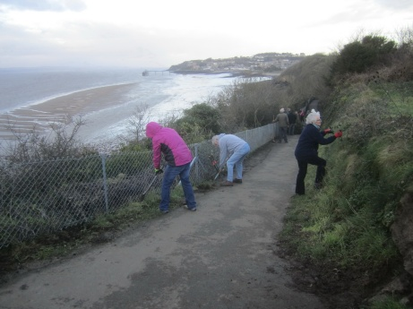 clearing weeds, mud and brambles from the coastal path b