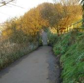 coastal path and badger bridge