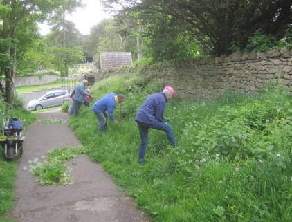 pulling nettles and other competitive species before grass cutting