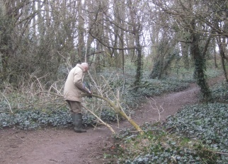 removing a fallen elder from the path