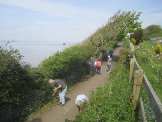 tidying along the coast path