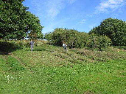 follow-up scrub control and grassland maintenance