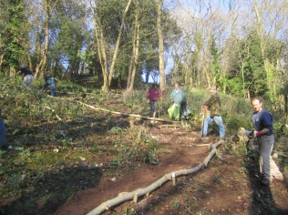 constructing a woodland trail