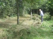 raking up