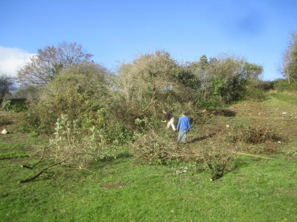 scrub-being-cut-back-to-reveal-the-old-lime-kiln-track
