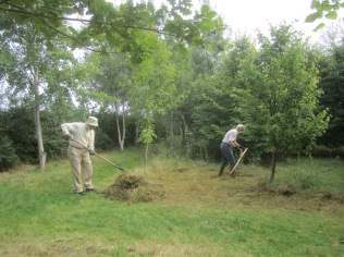 scything-and-raking