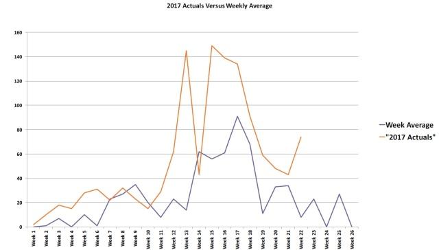 5th month comparisons