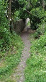 access to the path cleared of vegetation