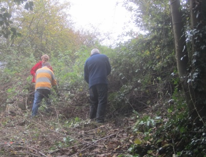 clearing-brambles-and-old-brash-this-was-the-entrance-to-the-site
