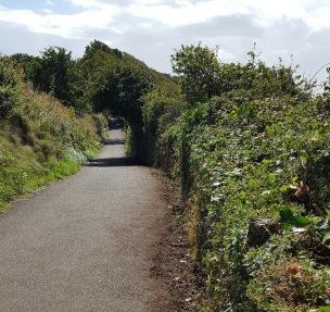 coast path looking west