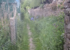 Hack's Way mown - looking towards Church Hill