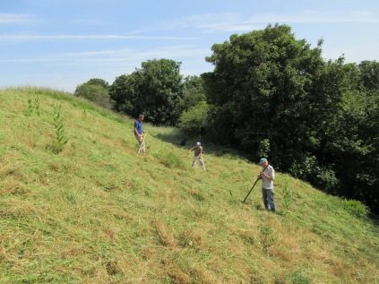 scything on Wain's Hill in 26°C