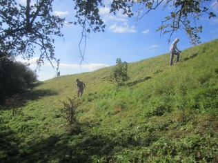 scything-on-wains-hill