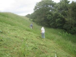 scything starts on Wain's Hill