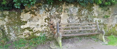 seat on the coastal path
