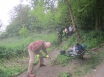 shovellling away vegetation to restore the path width