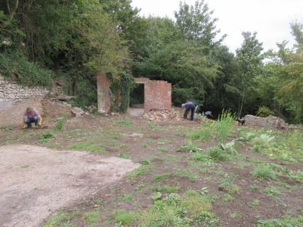 the area will eventually grow over with grass and lower growing species