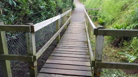 the badger bridge on the coast path