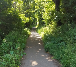the old path on Church Hill 2