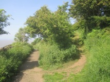 the western end of the 1923 path mown