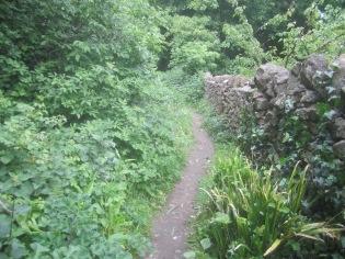 - towards the coast path