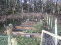 6th-form-plot-tidied