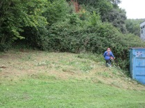 brush cutting vegetation after pulling ragwort
