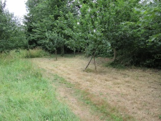The Community Orchard - path and picnic area mown