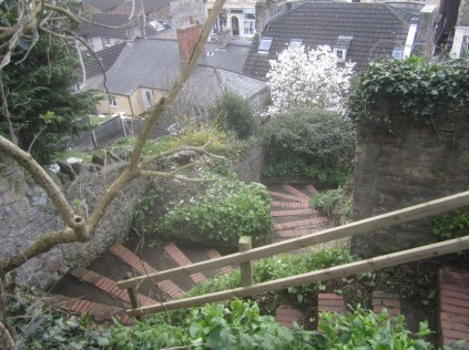 Zig Zag steps cleared and swept after cutting back sycamore
