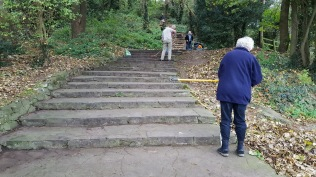 autumn leaves are swept from the steps above Marine Lake