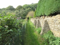 Hack's Way mown and overhanging brambles trimmed