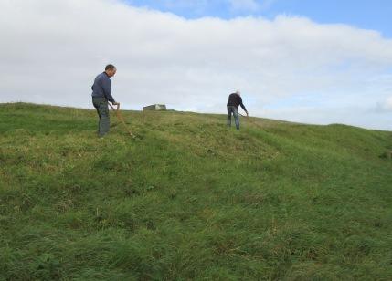 late summer scything starts again on Wain's Hill