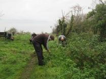 pulling nettles