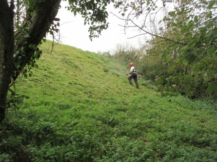 strimming the last section of the Wain's Hill rampart