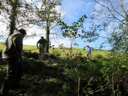 the cut grass is taken down into the woodland and heaped into habitat piles