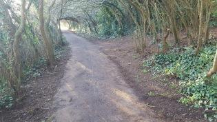 Church Hill path swept