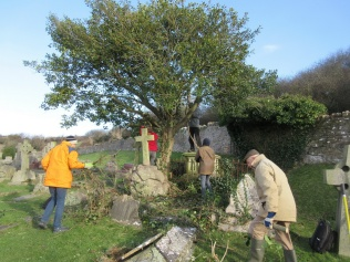 work continues around the holly tree