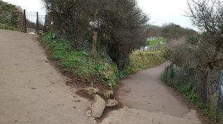 paths tidied