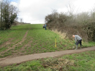 tidying the path edge and trimming back bramble shoots